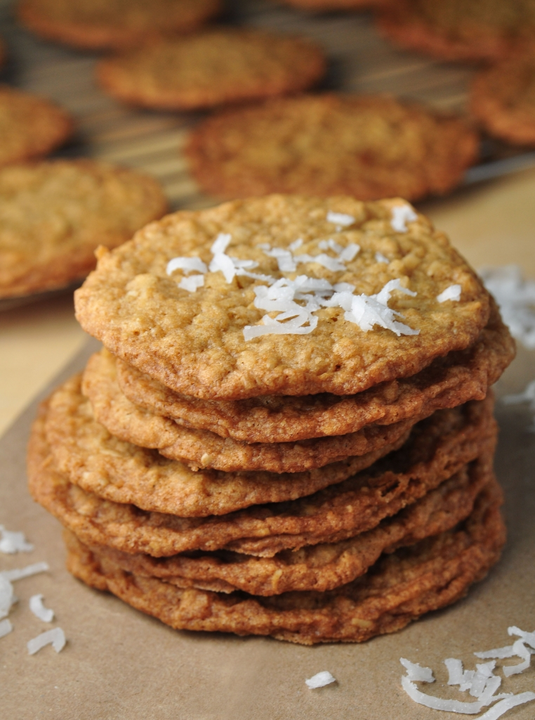 Coconut Cookies 0914B