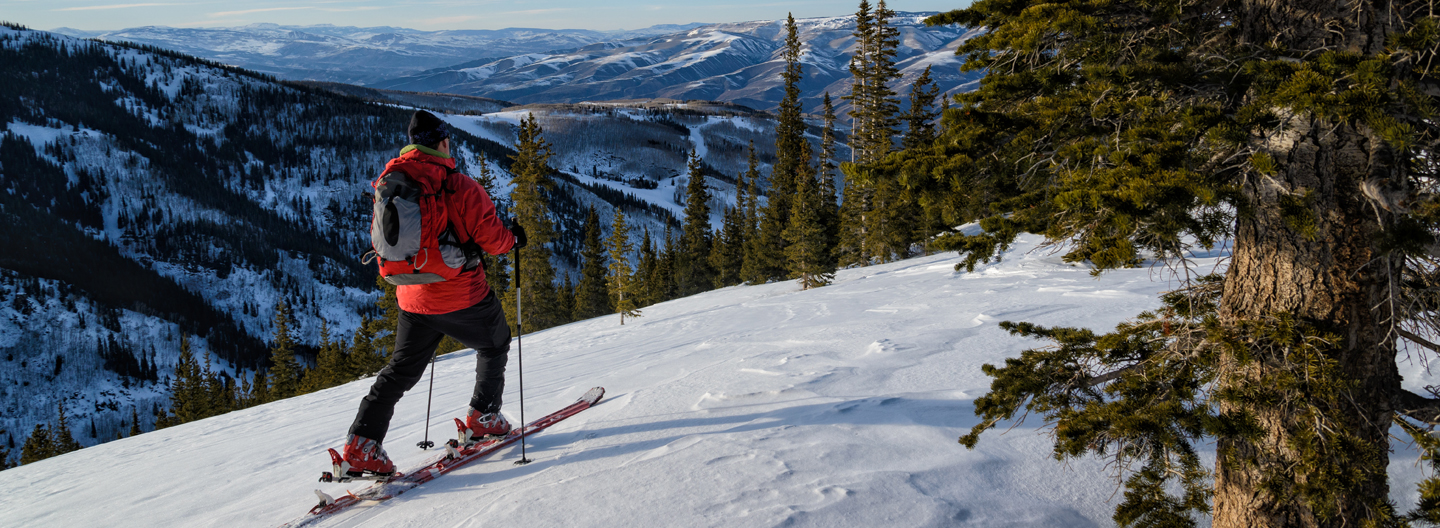 Skiing in the Backcountry